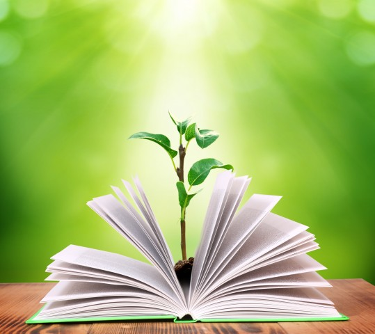 plant-growing-out-of-book-learning-539x480