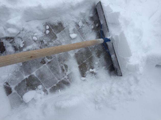 shovel 1.JPG