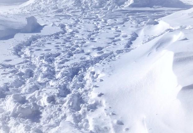 snowfeet.jpg